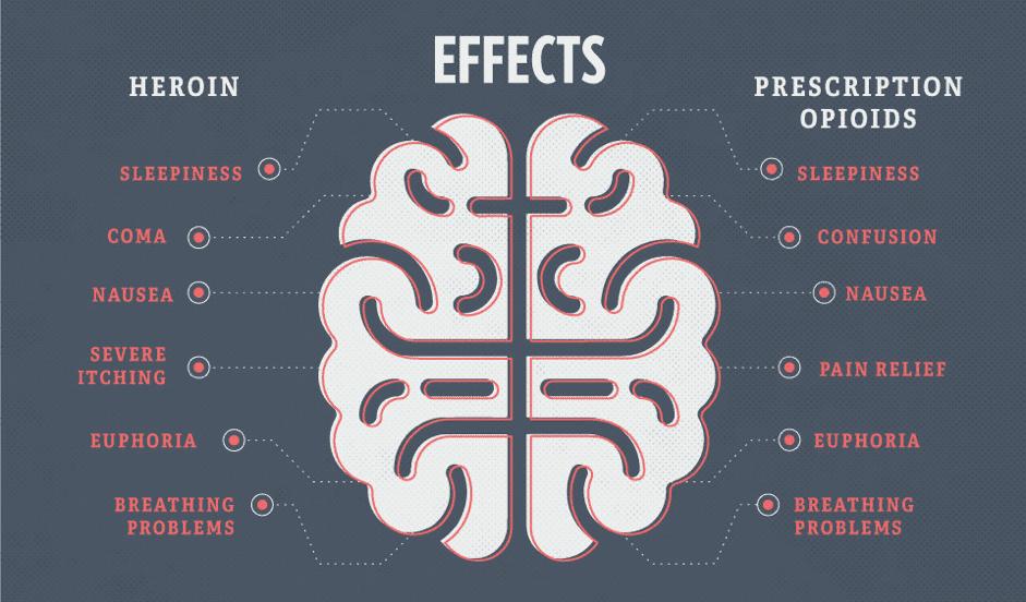 opioid epidemic, Medical Marijuana vs The Opioid Epidemic